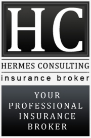Hermes Consulting